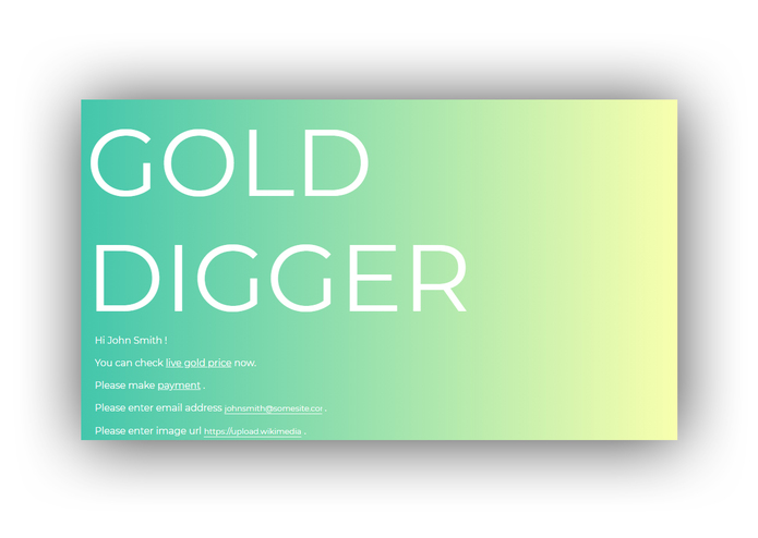 GOLD DIGGER – screenshot 5