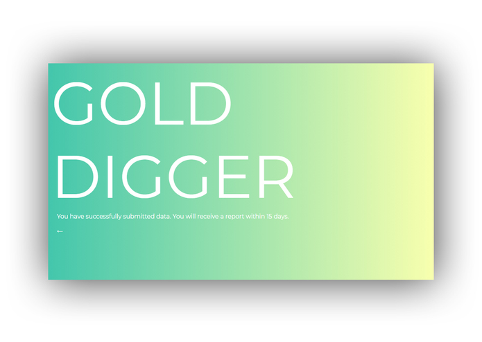 GOLD DIGGER – screenshot 6