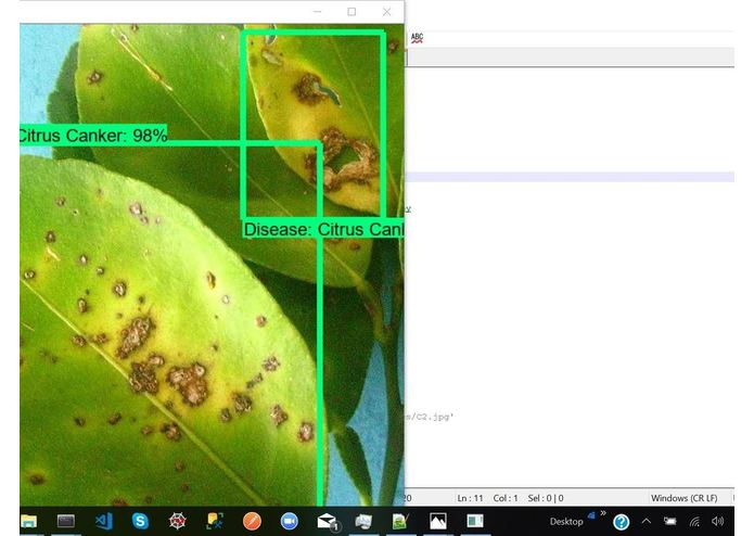 Identifying Pathological Diseases in Plants powered by TF2.0 – screenshot 3