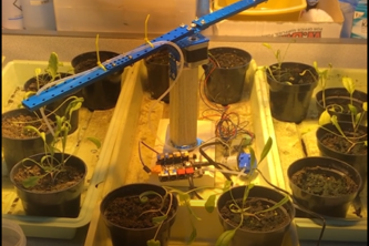 Intelligent Irrigation