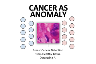 Cancer as Anomaly