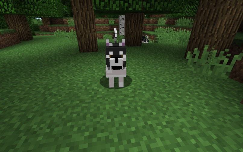Versatile Dogs for Minecraft – screenshot 5