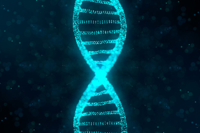Reactive Genetics – screenshot 1