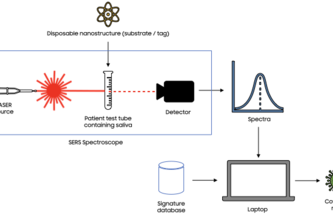 Samsung SARS-CoV-2 detection with SERS spectroscopy research