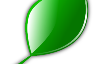 New Leaf: Green Consumer Purchasing Recommendations