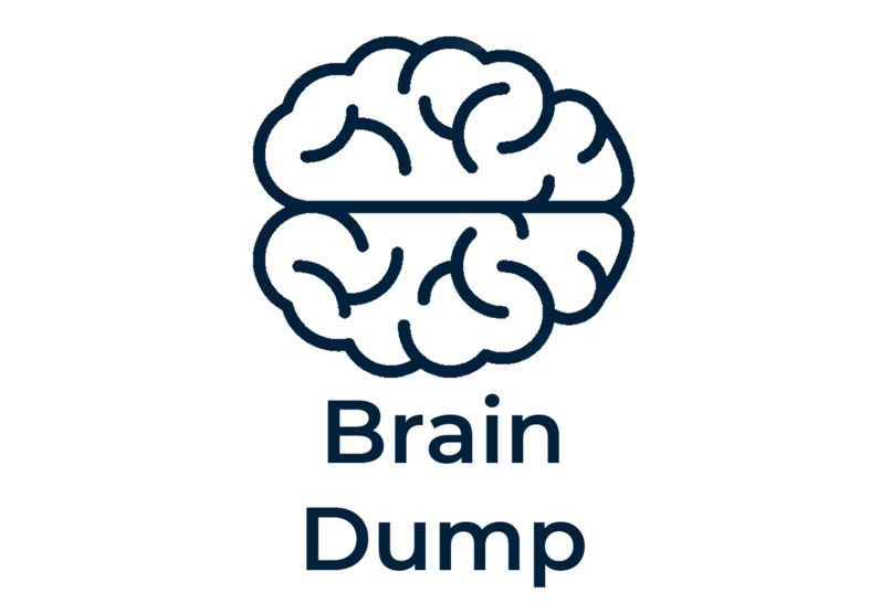 Brain Dump – screenshot 1