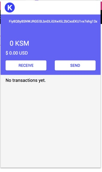 Kusama Wallet – screenshot 5