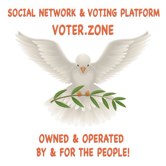 Voter.Zone: Reclaiming the Narrative & Redefining Democracy! – screenshot 1