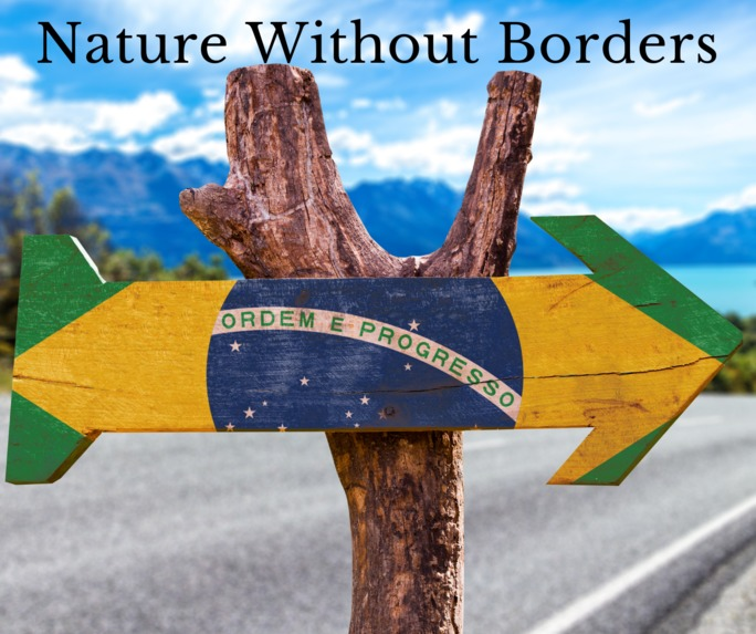 Nature Without Borders - Collaborative Communities – screenshot 3