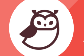 Owl Accessibility Bot