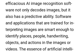 artificial intelligence (image recognition)