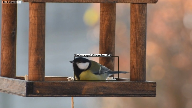 BirdBot - Computer Vision That Enables Citizen Science – screenshot 5