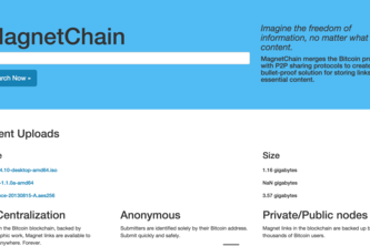 MagnetChain