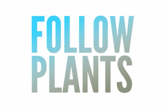 Follow Plants