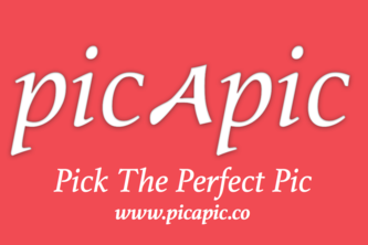 Picapic