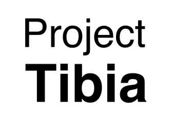 Project Tibia