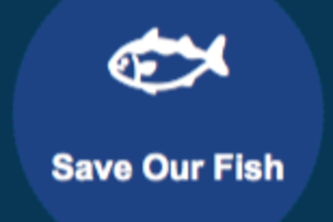 Save our Fish