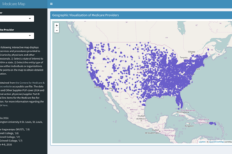 Geographical Visualization of Medicare Providers