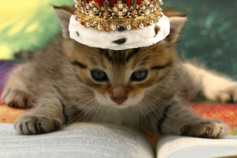 The King Lolcat Translation Project