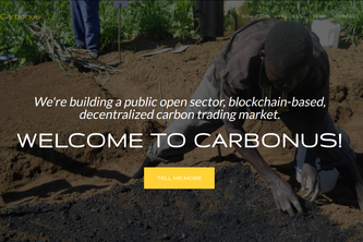 Carbonus:  The Open Sector Carbon Market
