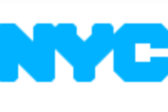 NYC Open Records: What the User Wants