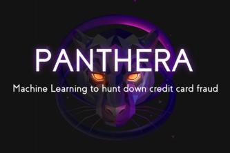 Panthera: Machine Learning to find Credit Card Fraud