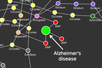 Imaging genetics for Alzheimer's disease