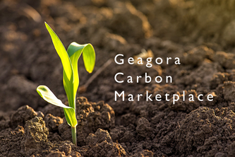 Geagora Carbon Marketplace