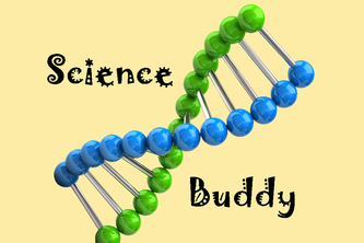 Science Buddy