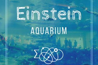 EINSTEIN Aquarium Tour