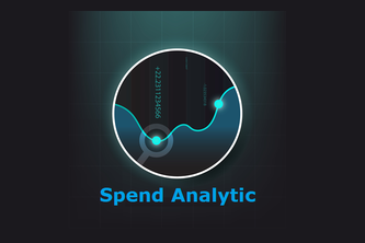 Spend Analytic