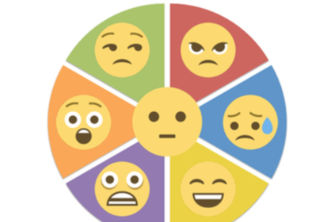 Student Emotion Monitor