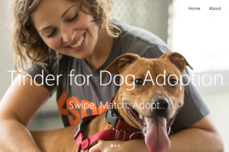 Tinder for Dog Adoption