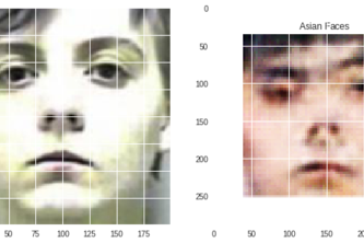 Race-change-using-Cycle-Generative-Adversarial-Network