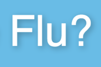 Who the Flu ?