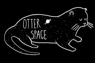 OtterSpace