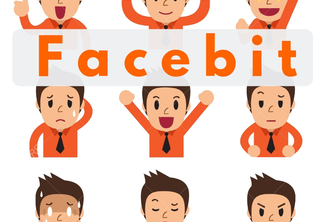 Facebit