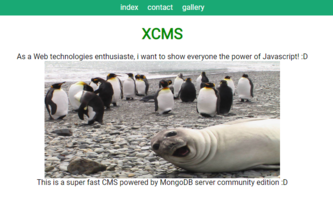 Xavier's Content Management System