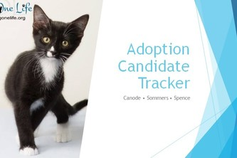 Adoption Candidate Tracker - Saving One Life - Team 19
