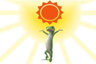 Weather Gecko