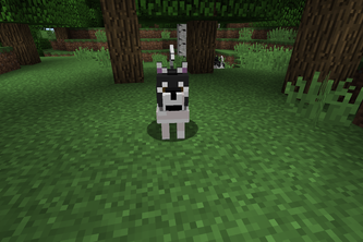 Versatile Dogs for Minecraft