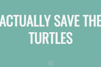 Actually Save the Turtles