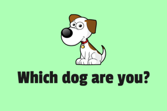 Which dog are you?