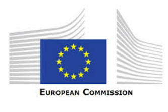 Partner Challenge: The European Commission