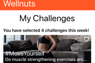 Wellnuts: tiny lifestyle challenges for healthy teleworking!