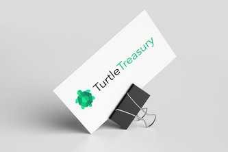 TurtleTreasury