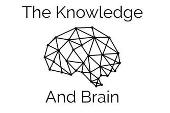 The Knowledge and Brain Corp