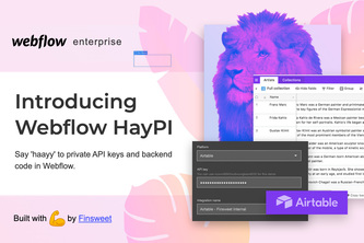 Finsweet - Backend code private API key with Webflow Form