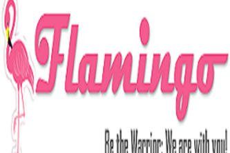 Flamingo - B-Team