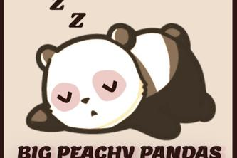 Big Peachy Pandas' Sleep Evaluator